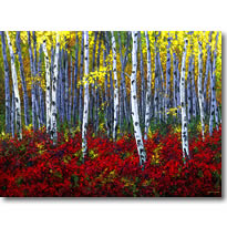 Crimson Forest - Aspen and Birch Tree Art by Jennifer Vranes