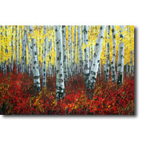 Mystic Forest - Aspen art and birch paintings by JensArt
