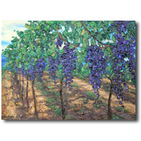Vineyard Art from Sonoma, Younteville, Napa, and Italy
